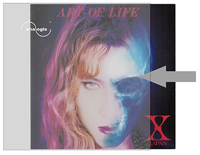 LP Vinyl Schallplatten Album Cover Aussen Hüllen